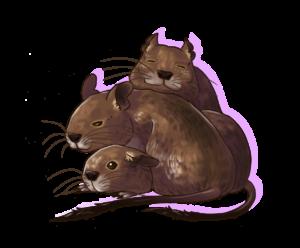 Dessin d'octodons